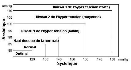 Classification de la tension artérielle par l'OMS